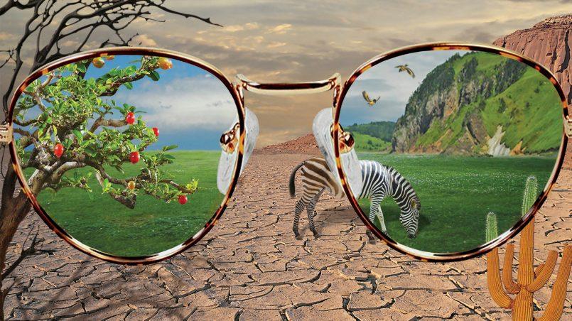 Сценарий жизни: вижу ли я то, что живу, или живу то, что вижу?